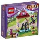 LEGO 41123 Veulen Wasplaats